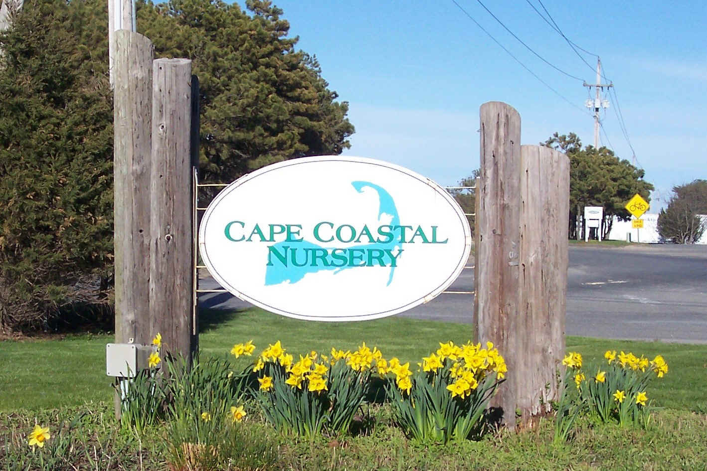 Cape Coastal Nursery